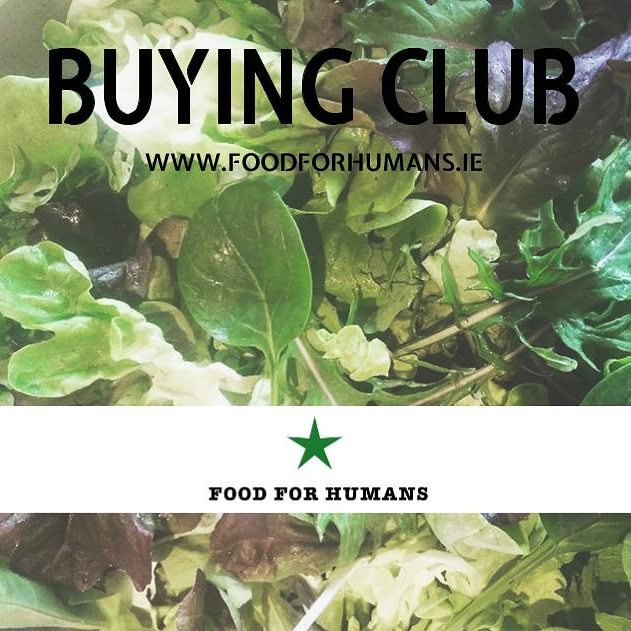We have started our buying club! If you want to get the best veggies direct to your door then follow the link in our profile to sign up for our weekly fresh produce list